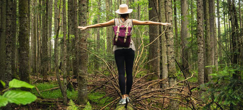 Forest | therapy for women in Louisville, CO | women's therapist | burnout | compassion fatigue | 80027 | 80025